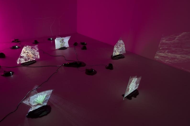 Archipel  2012  Installation, vidéo-projecteurs, plaques de verre brisées avec film opaque de projection, résine capa, haut-parleurs, éclairage multicolore.